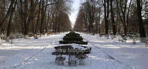 parcul cancicov iarna 2